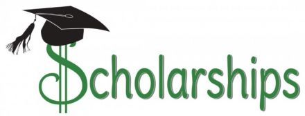 DMS PTO Scholarship